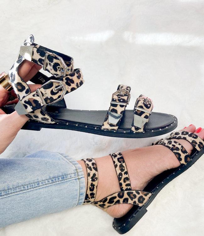 Juul sandals leopard