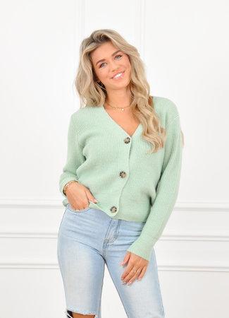 Pixie vest mint
