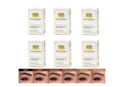 Brazilianbrows 6 colors package deal