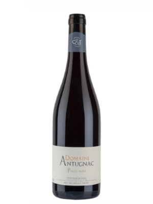 Pinot noir 2017 (Antugnac)