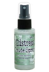 Ranger Ranger Distress Oxide Spray - Iced Spruce TSO64763 Tim Holtz