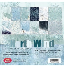 Craft & You Craft&You North Wind BIG Paper Set 12x12 12 vel CPS-NW30