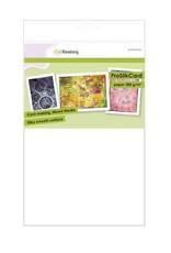 Craft Emotions CraftEmotions ProSilkCard - luxe glad karton wit 10 vl A4 - 300 gr