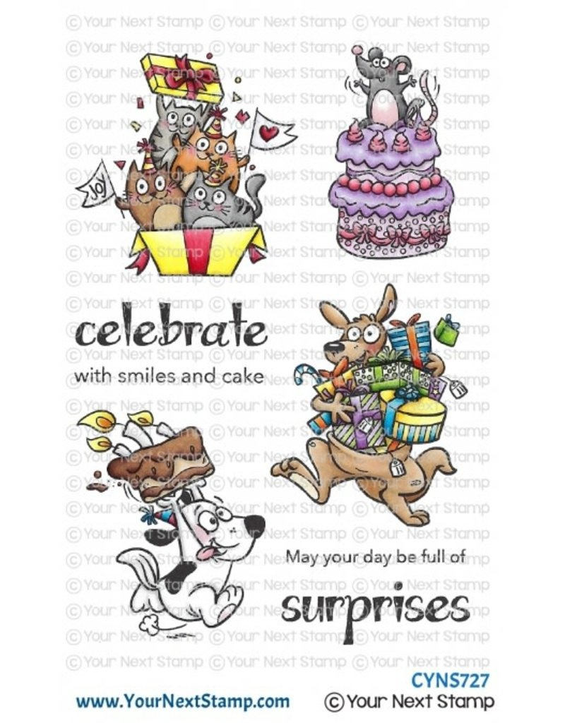 Your Next Stamp Your Next Stamp Birthday Surprise CYNS727