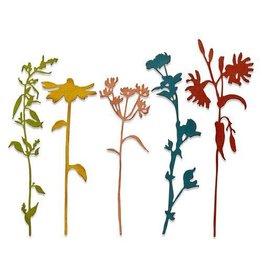 Sizzix Sizzix Thinlits Die Set - 5PK Wildflower Stems #3 665221 Tim Holtz