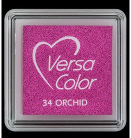 versacolor Versacolor Orchid 34