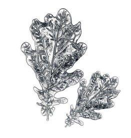 Sizzix Sizzix 3D impresslits  Oak Leaf 665374