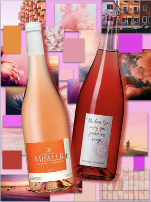 Degustations-Set «Rosé» (6er Karton)