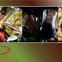 11. Oktober 2020 - Herbst-Degustation in Knonau