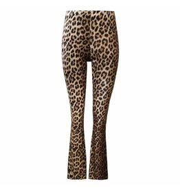 Imperium Looks LEOPARD FLARED PANTS
