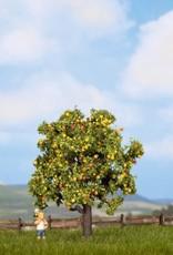 Noch Apfelbaum mit Früchten
