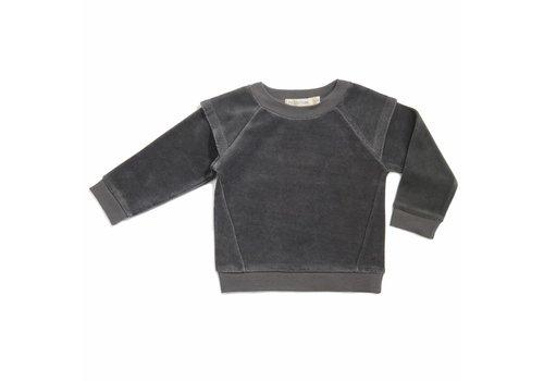 Phil & Phae Phil & Phae  Epaulette sweater velvet graphite