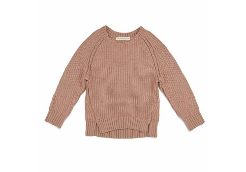 Phil & Phae Phil & Phae knit sweater chunky dusty nude