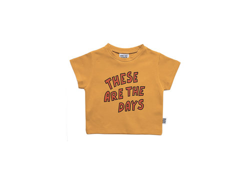 One day parade One day parade t-shirt these are the days