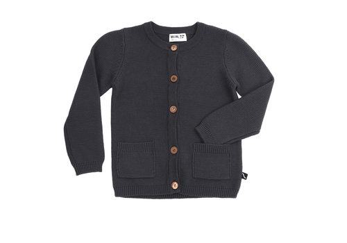 CarlijnQ CarlijnQ vest knit grey