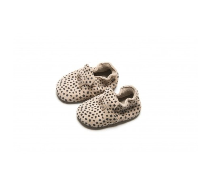 Mockies first steps speckle sand