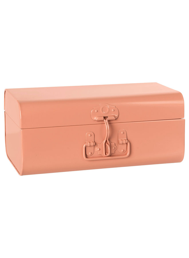 Storage suitcase powder large