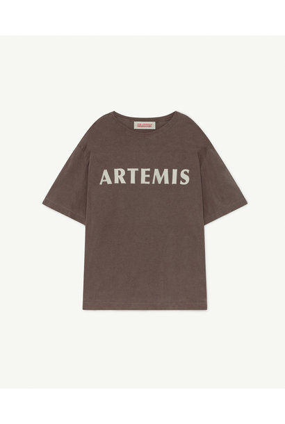 The Animals Observatory oversized t-shirt deep brown