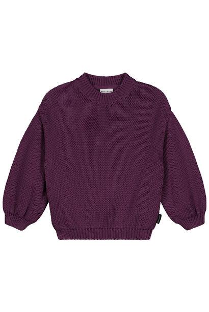 Daily Brat sweater sadie purple rain