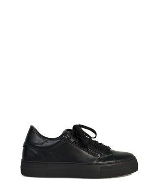 Antony Morato Antony Morato : Sneaker Black-MMFW01210