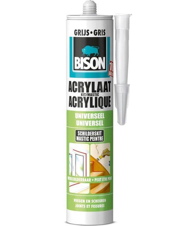 Bison Acrylaatkit 300ml Grijs