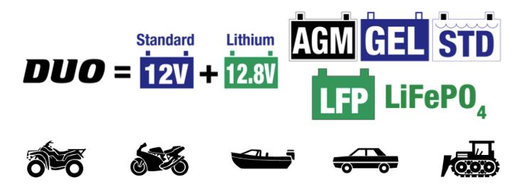 12V lead acid & 12.8V Lithium