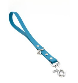 Training leash Blue