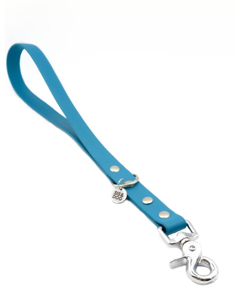 Biothane training leash Blue