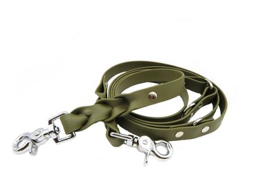 Leash & Collar set