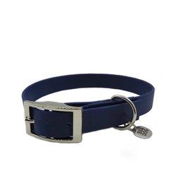 Dark blue set breed