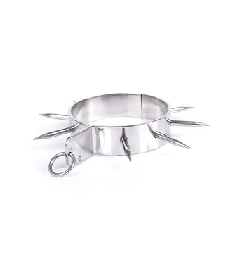 Kiotos Steel Spiked Halsband