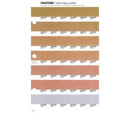 Pantone PMS Solid Chips vervangingspagina op coated papier 1.6C, kleurnummers 871C - 872C - 873C - 874C - 875C - 876C - 877C
