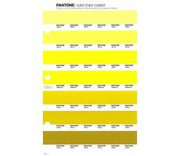 Pantone PMS Solid Chips vervangingspagina op coated papier 2C, kleurnummers 100C - 101C - 102C - 103C - 104C - 105C
