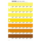 Pantone PMS Solid Chips coated pagina 12C