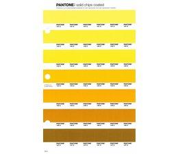 Pantone PMS Solid Chips vervangingspagina op coated papier 15C, kleurnummers 141C - 142C - 143C - 144C -145C - 146C - 147C