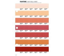 Pantone PMS Solid Chips vervangingspagina op coated papier 36C, kleurnummers 7520C - 7521C - 7522C - 7523C - 7524C - 7525C - 7526C