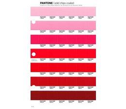 Pantone PMS Solid Chips vervangingspagina op coated papier 41C, kleurnummers 1765C - 1775C - 1785C - 1788C - 1795C - 1805C - 1815C