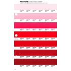 Pantone PMS Solid Chips coated pagina 47C