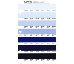 Pantone PMS Solid Chips vervangingspagina op coated papier 110C, kleurnummers 538C - 537C - 536C - 535C - 534C - 533C - 532C