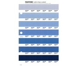 Pantone PMS Solid Chips vervangingspagina op coated papier 112C, kleurnummers 2162C - 2163C - 2164C - 2165C - 2166C - 2167C - 2168C