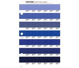 Pantone PMS Solid Chips vervangingspagina op coated papier 113C, kleurnummers 2373C - 2374C - 2376C - 2377C - 2378C - 2379C - 2380C
