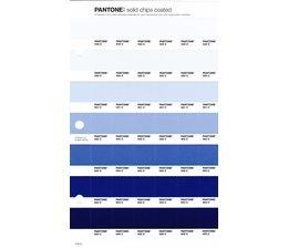 Pantone PMS Solid Chips vervangingspagina op coated papier 119C, kleurnummers 649C - 650C - 651C - 652C - 653C - 654C - 655C