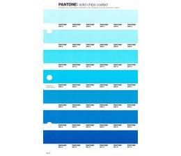 Pantone PMS Solid Chips vervangingspagina op coated papier 147C, kleurnummers 635C - 636C - 637C - 638C - 639C - 640C - 641C