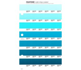 Pantone PMS Solid Chips vervangingspagina op coated papier 156C, kleurnummers 317C - 318C - 319C - 320C - 321C - 322C - 323C