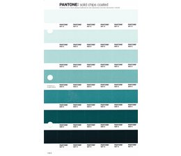 Pantone PMS Solid Chips vervangingspagina op coated papier 176C, kleurnummers 621C - 622C - 623C - 624C - 625C - 626C - 627C