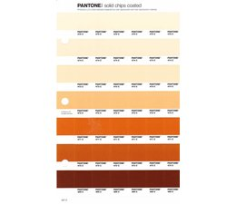 Pantone PMS Solid Chips vervangingspagina op coated papier 227C, kleurnummers 475C - 474C - 473C - 472C - 471C - 470C - 469C