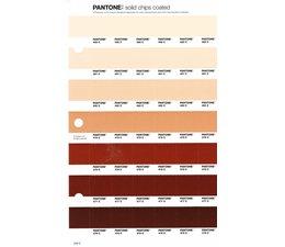 Pantone PMS Solid Chips vervangingspagina op coated papier 234C, kleurnummers 482C - 481C - 480C - 479C - 478C - 477C - 476C