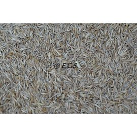 ECS Grass seeds ECS Special