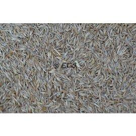 ECS Graszaden Speciaal (tijdelijk met 4 soorten zaden)