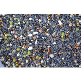 ECS Seed germination Fine
